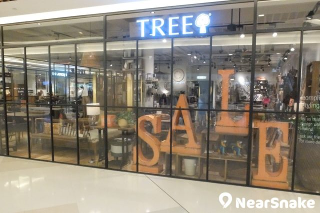 HomeSquare 內與自然融合的傢俬店 TREE。