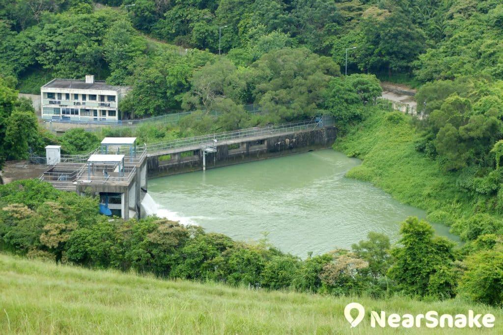 沙田城門河的源頭是位於下城門道旁的城門水塘。