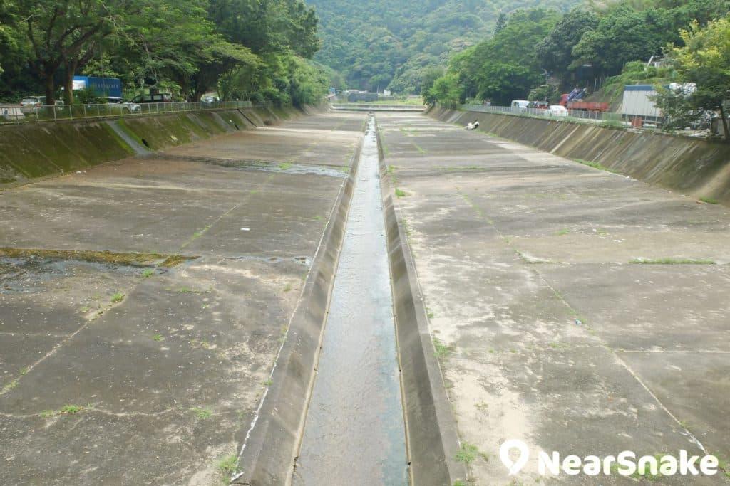 大圍香粉寮的明渠,不說還真不知是沙田城門河上游部分。