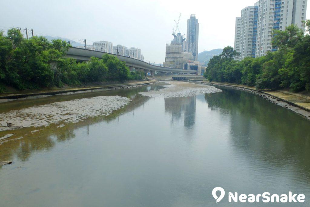 穿過大圍文禮閣旁的水壩後,城門河河道便開始變得寬闊。