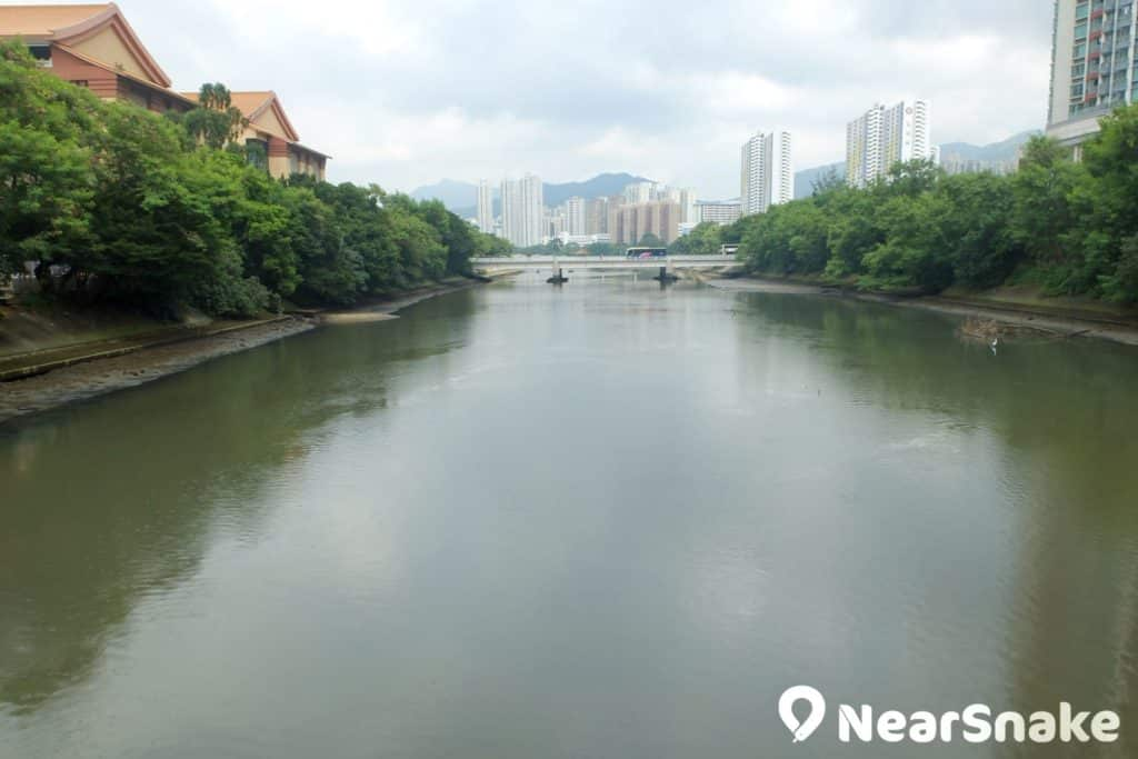 迎著獅子橋走去,正式展開城門河之旅;旁邊的中式建築正是香港文化博物館。