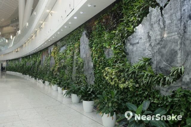 西九站候車大堂的《香港文化地圖》,也是一幅園藝展品。