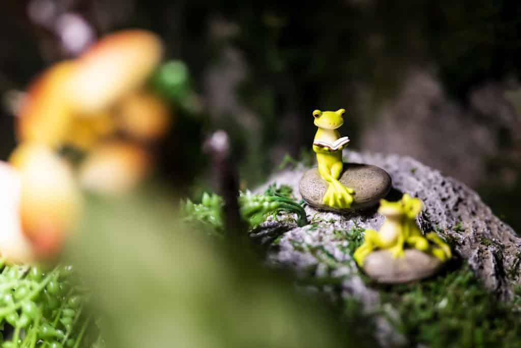 D2 Place:螢の森The Forest Light 螢の森到處都是小驚喜。