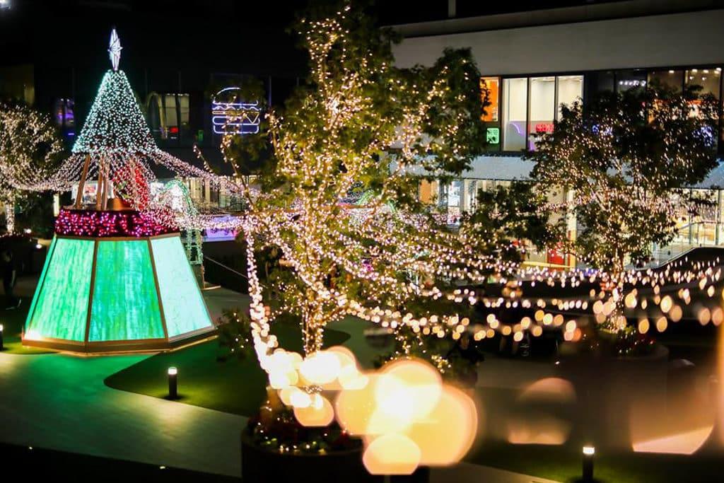新都會廣場:Christmas Rosemance 逾 4 萬平方呎戶外露天廣場將化身成玫瑰花之園。