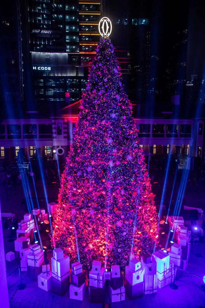 「卡地亞假大館傳揚聖誕精神」慶祝活動 燈光映照下令聖誕樹更有浪漫氣氛。