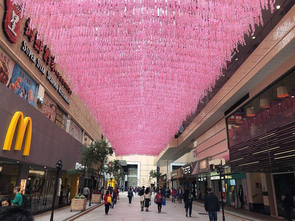 淘大商場露天食街將裝設應節的桃花天幕,以一串串粉嫩的桃花造出大片花海。
