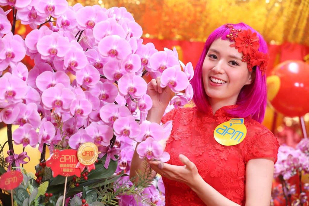 觀塘apm:開運潮豬迎新春 萬紫千紅桃花園