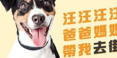 迪士尼:全城狗狗行善日2019