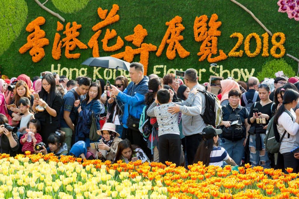 香港花展2019:大紅花為主題花 香港花卉展覽2018吸引大批市民進場拍攝花卉。