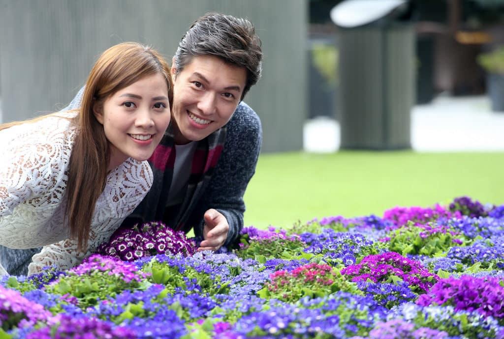 新都會廣場:「花言蜜語」情人節活動 新都會廣場情人節打造浪漫的「花言蜜語」主題裝置。