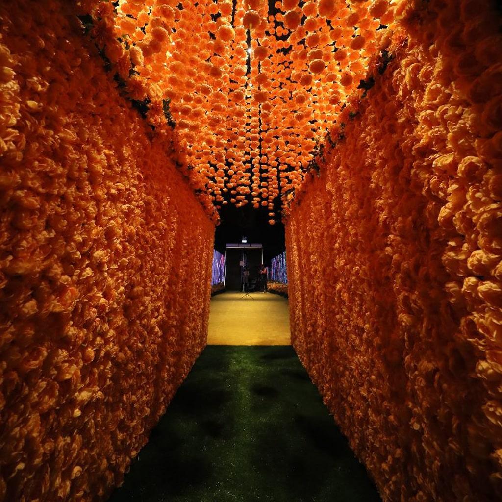 時代廣場:「新年與瑞獸同遊」展覽 由幸福花海引領下,走過充滿古代吉祥瑞獸的神奇隧道。