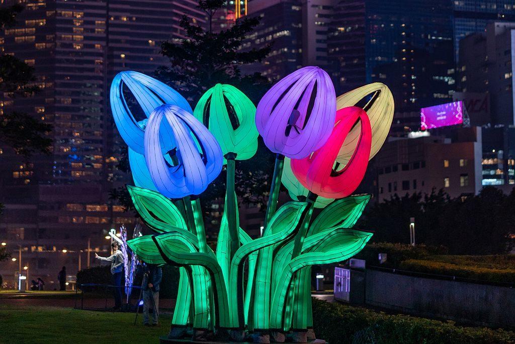 國際燈光藝術展-Bunch of Tulips(Peter Koros,匈牙利) :藝術家在巨大的充氣裝置中製造出五彩繽紛的鬱金香,作品帶有波普藝術的氣息。