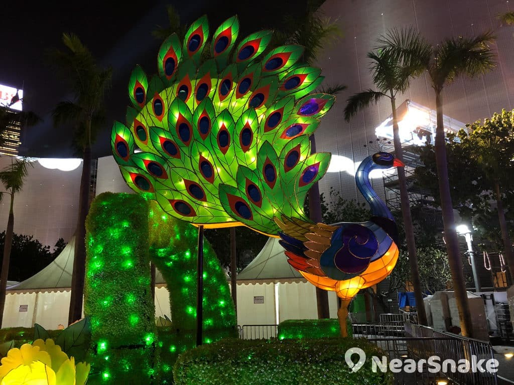 文化中心:市區元宵綵燈會 2019 孔雀開屏的綵燈裝置色彩繽紛。