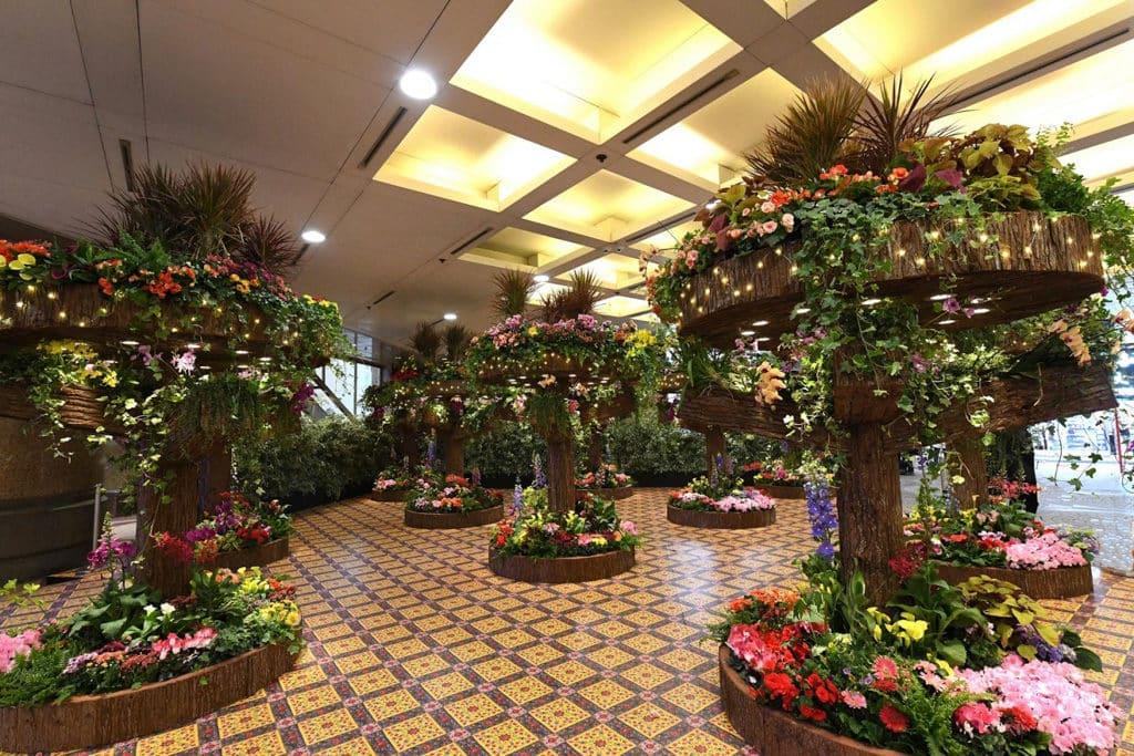 時代廣場:迎春簪花展覽 今次展出 6000 盆、超過 20 多個品種的花卉。