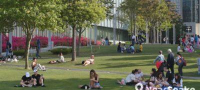 【野餐地點推薦】10大市區草地野餐好去處 添馬公園野餐首選