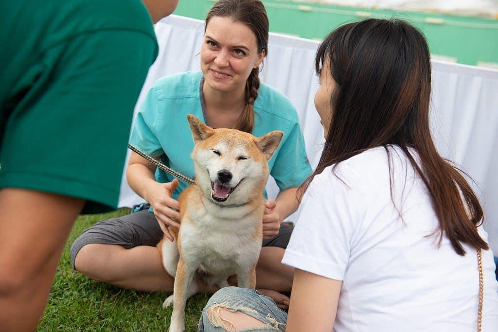 大會將與 Hellodog 攜手舉辦多場寵物活動,如狗狗瑜伽課、狗狗按摩工作坊等。