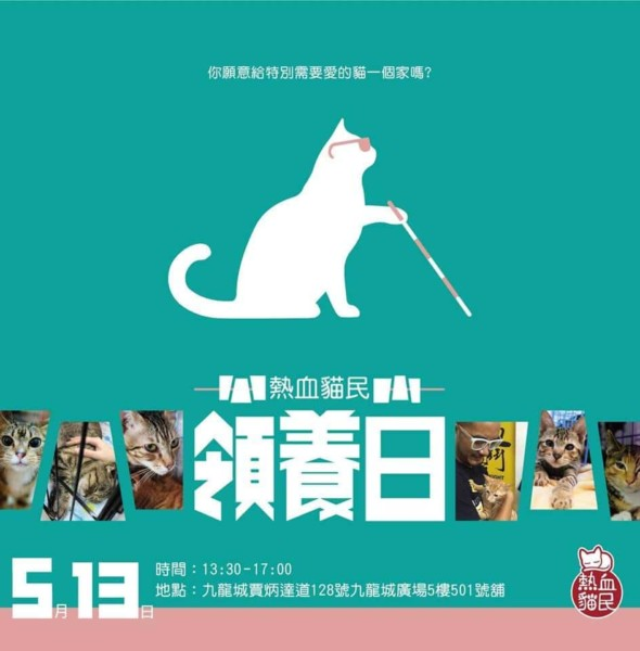 KCP 九龍城廣場:熱血貓民領養日