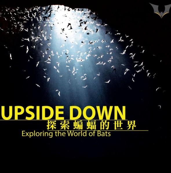 JCCAC:探索蝙蝠的世界 生態及文化展覽