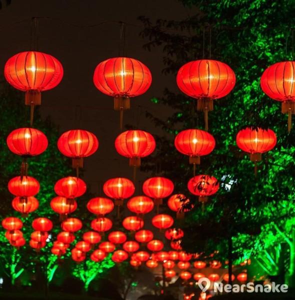 北區公園:新界東元宵綵燈會 2019