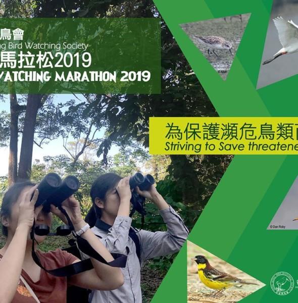九龍公園:觀鳥馬拉松 2019