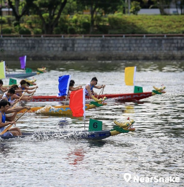 沙田龍舟競賽 2019